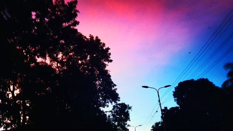 Pinkish sky!!! Not every day u can have a view like this!!! Nature EyeEm New Here Beautiful Sky Pink Color Dramatic Sky Cloud - Sky EyeEm Nature Lover Awsome Sunset EyeEmNewHere Beauty In Nature Outdoors Low Angle View Tree Sky EyeEm Selects Sunset Lovers Beauty In Nature Nature The Week On EyeEm If Trees Could Speak Art Everywhere
