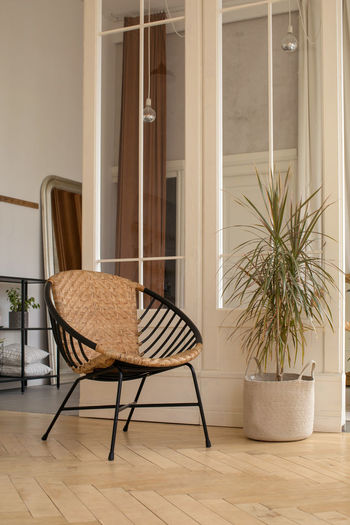 Chairs and potted plant against window at home