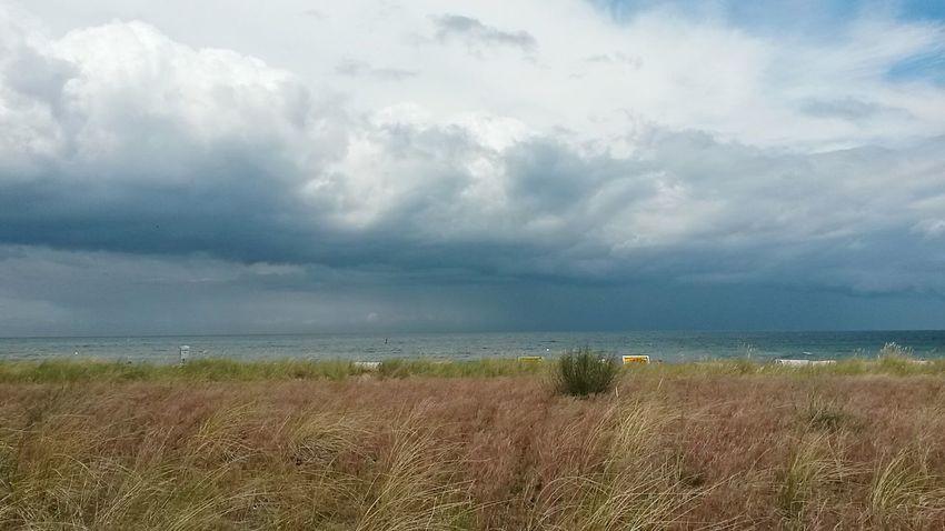 Clouds Wolken Sky And Clouds Himmel Sky Ausblicke First Eyeem Photo Landschaften Grass Eastsea Ozean Ostsee Strand Meer Ocean Sea Beach Dünengras Dünenlandschaft