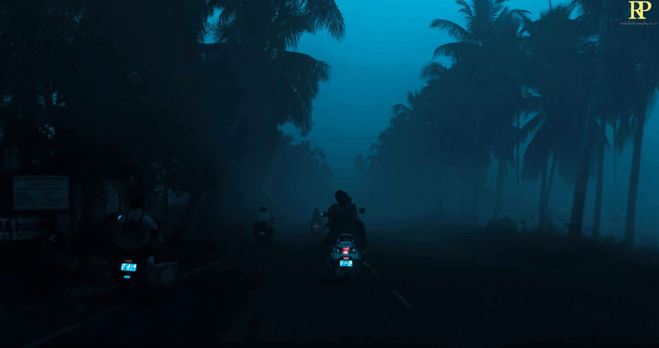 On a foggy early morning... Mornings Early Mornings India Nature Blue Hours Sunrise Tree City Full Length Sitting Sky Foggy Vehicle Moving Land Vehicle Motor Scooter Fog Silhouette