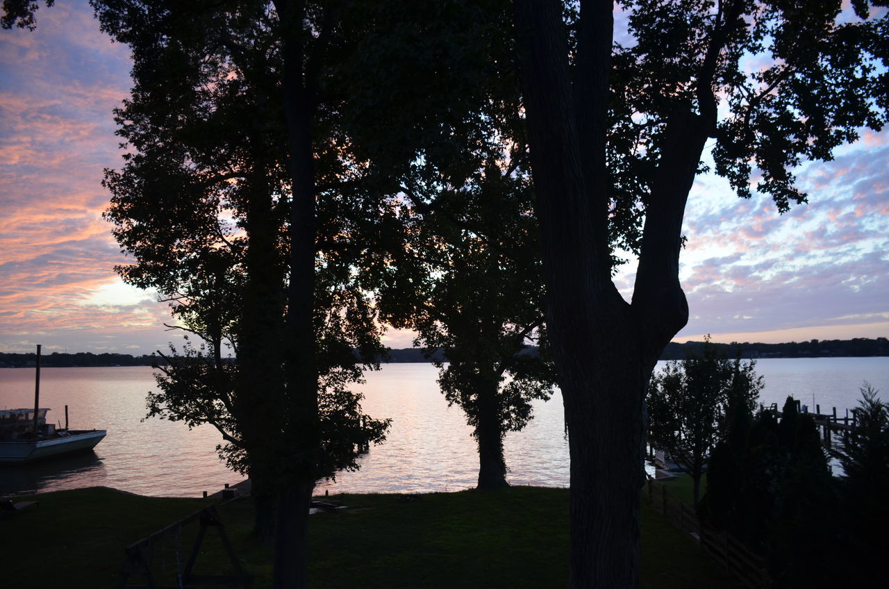 tree, water, nature, lake, scenics, tranquil scene, beauty in nature, sky, silhouette, tranquility, outdoors, sunset, no people, cloud - sky, growth, tree trunk, day, branch