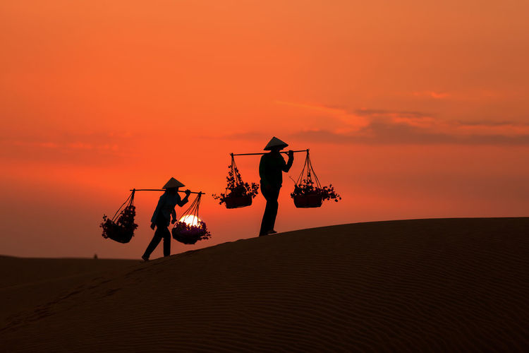 Silhouette men carrying potted plants in baskets on bamboo pole on landscape against orange sky