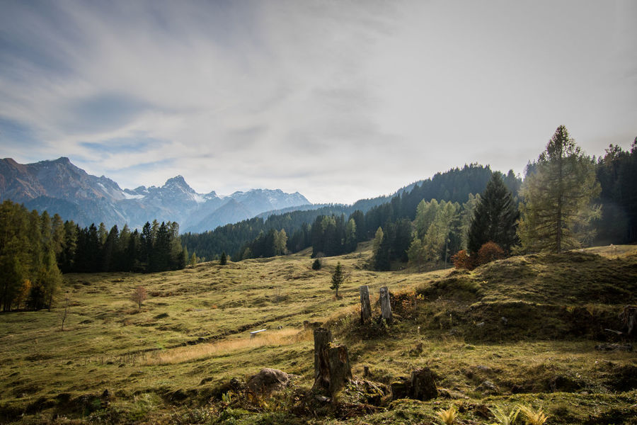 day in the austrian mountains Austria Autumn Alps Beauty In Nature Cloud - Sky Day Grass Landscape Mountain Mountain Range Mountains Nature No People Outdoors Scenics Sky Tranquil Scene Tranquility Tree