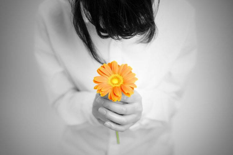 Midsection of woman holding orange gerbera daisy flower against gray background