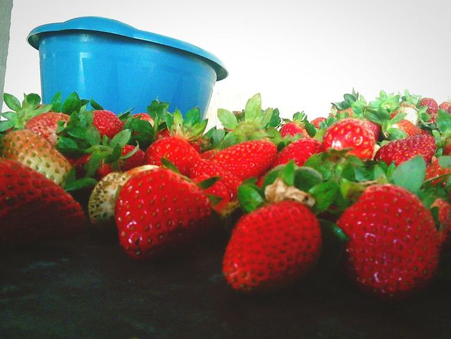 Strawberry Fruit Food Red No People Guatemala Nature Strawberries Fruits Beauty In Nature Red Color Green Color Food Stories