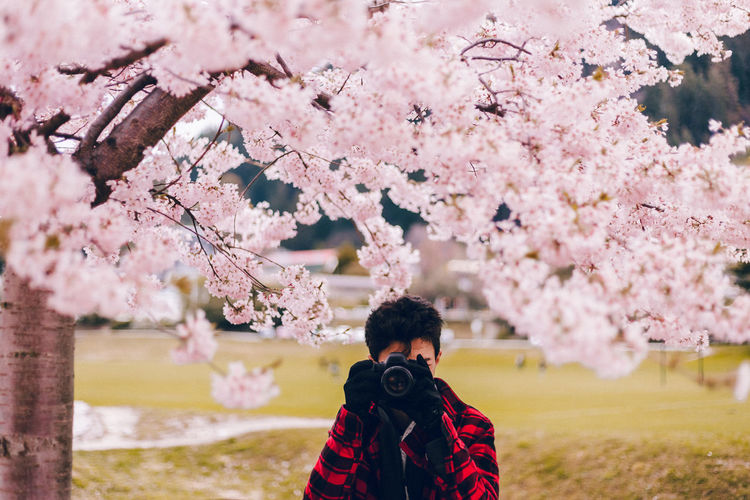 Cherry Blossom in Queenstown, NZ Flower Plant Tree One Person Flowering Plant Springtime Blossom Nature Cherry Blossom Photographers_tr Camera