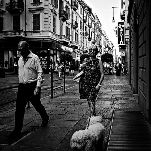 Dogs like sheeps. Adult Black And White Black And White Photography Bnw City City Life Dog Lifestyles Olympus Om-d E-m10 Outdoors People Person Puppy Street Street Life Street Photography Torino Italy Turin Turin Italy Walking People Monochrome Photography Fashion Stories Stories From The City This Is Aging Adventures In The City