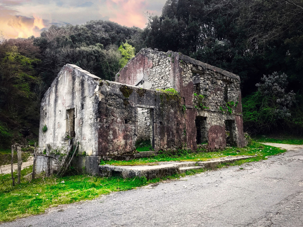 architecture, built structure, history, the past, plant, nature, old, no people, old ruin, building exterior, damaged, sky, day, abandoned, ancient, building, tree, outdoors, obsolete, weathered, ruined, archaeology, ancient civilization