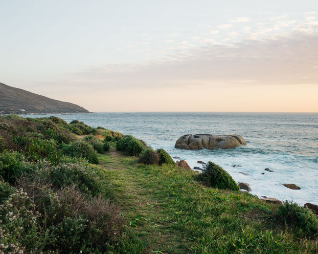 The Coastal Road. Just off the Atlantic Ocean in Cape Town - a series. Mid July, 2018. Sea Sky Water Scenics - Nature Beauty In Nature Horizon Over Water Horizon Grass Tranquil Scene Tranquility Plant Land Nature No People Cloud - Sky Rock Beach Non-urban Scene Sunset Outdoors Cape Town South Africa Jonnynichayes Ocean Wave Waves Blue Mountain Mountain Range Rocks Popular Photos My Best Photo My Best Travel Photo Coastline Coast Evening Sunset_collection Beautifulinnature