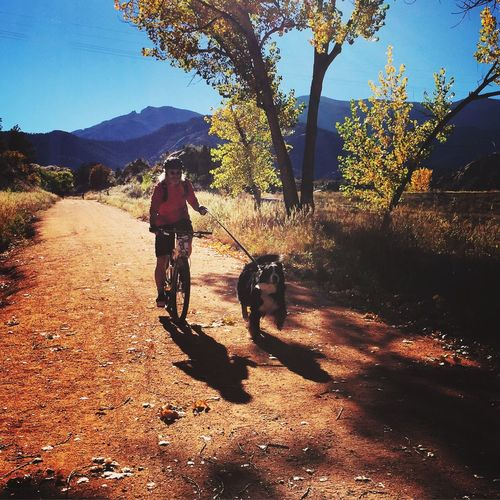 The Great Outdoors - 2015 EyeEm Awards Colorado Outdoors Red Rock Canyon IPhoneography EyeEm Best Shots Nature Hello World Popular Bernese Mountain Dog Eye4photography  EyeEm Nature Lover Taking Photos Bicycle Bike