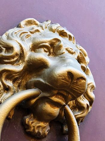 Ornamento Doorbell Bronze Lion Ornament Ornaments EyeEm Selects Art And Craft Sculpture Statue Representation Creativity No People Craft Close-up Human Representation Indoors  Day History Male Likeness The Past Gold Colored Animal Wildlife Religion
