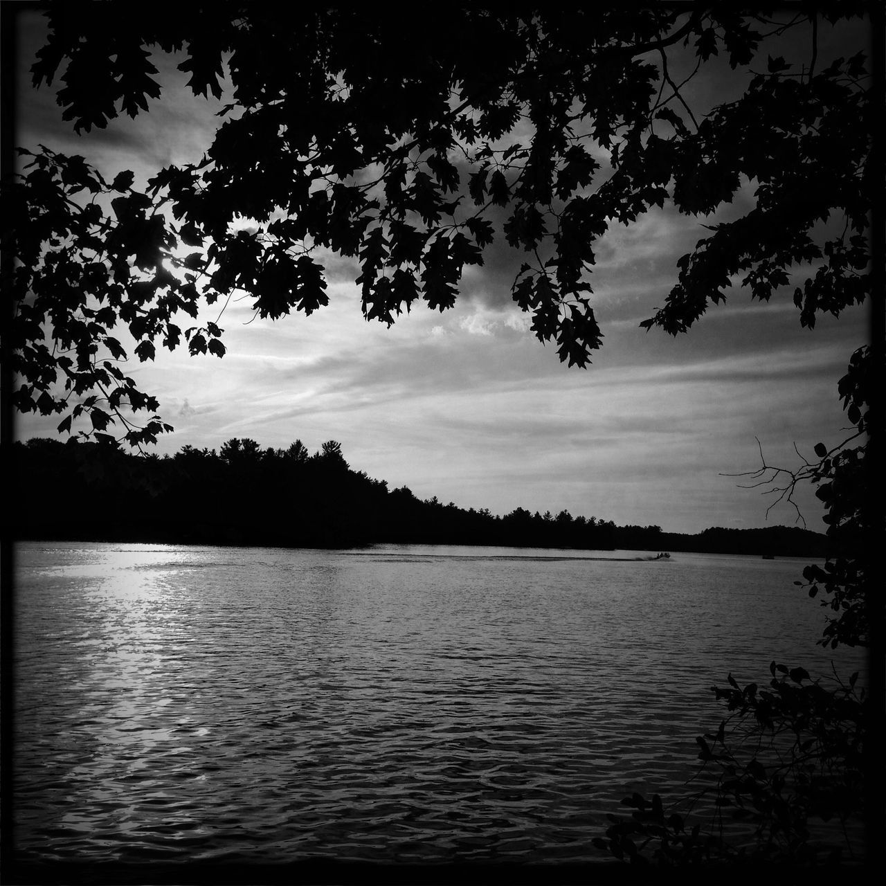 View of calm lake against silhouette trees