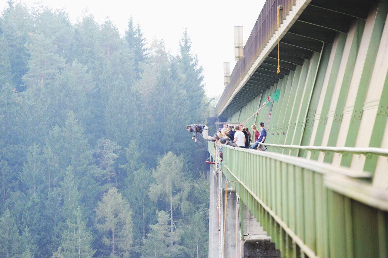 Man bungee jumping from railway bridge against trees