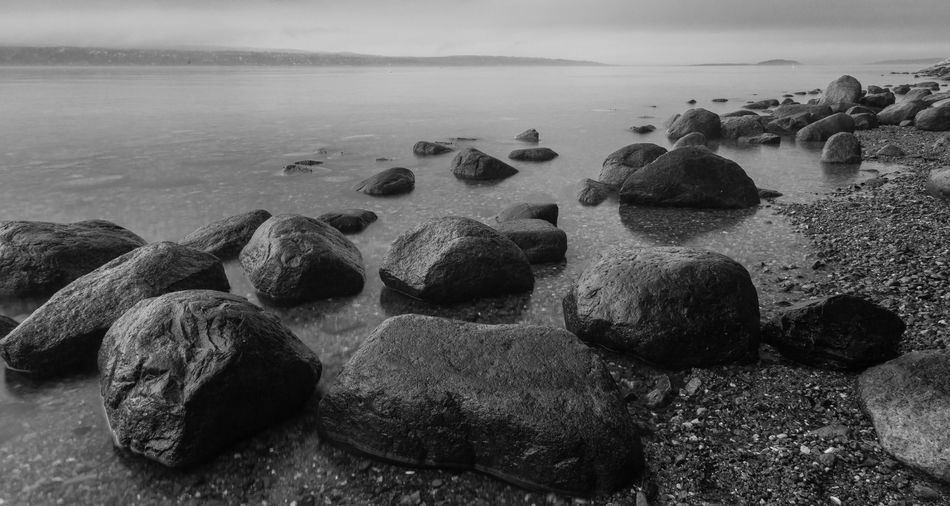 Nature Sea Rock - Object Water Tranquility Tranquil Scene Beauty In Nature Outdoors Pebble Beach Shore Rocks And Water Norway Oslo Oslo, Norway Oslofjord Scenics Black And White Black & White B&w