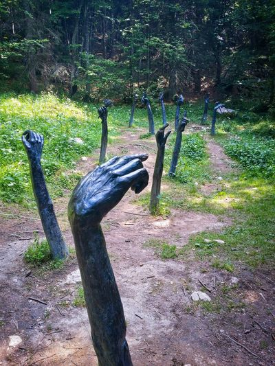 Silence Trail, Door Of Memory Campomuletto Asiago Highland Vicenza Italy Travel Photography Travel Voyage Traveling Mobile Photography Fine Art Photography Artistic Installations Wwi Memorials Showcase July
