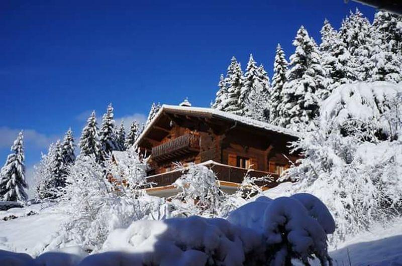 Bernex France Winter Wonderland