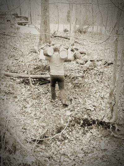 Lumberjackhipster Lumberjack B&w Hipster Nature Winter