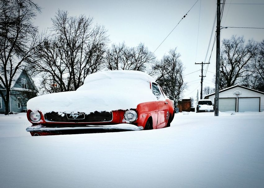 Poppy red Taking Photos Check This Out Vintage Cars Winter Wonderland EyeEm Best Shots Eye For Photography Ford Mustang Retro Style A Day In The Life Automobile