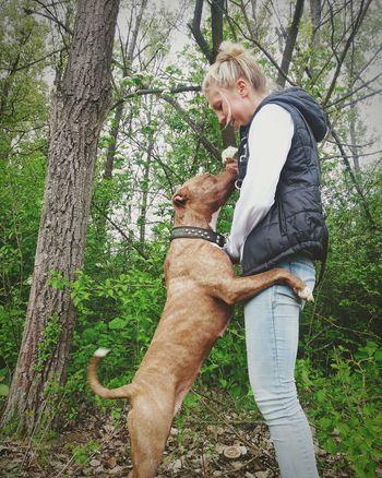Girl Dog DogLove Woman Love Pitbull Apbt Americanpitbullterrier Pitbullterrier Bullybreed Girlwithdog