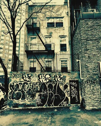 Check This Out NYC Photography Jayguepics Old Buildings Graffiti EyeEm Best Edits EyeEm Best Shots This Week On Eyeem Innovating Everything In Its Place EyeEm Gallery Funphotography Changing The World Enjoying Life Taking Photos EyeEm Pics EyeEmBestPics Outdoor I MonkeySatanMar Follow4follow Alwaysfollowback Hello World Followme Follow #f4f #followme #TagsForLikes #TFLers #followforfollow #follow4follow #teamfollowback #followher #followbackteam #followh