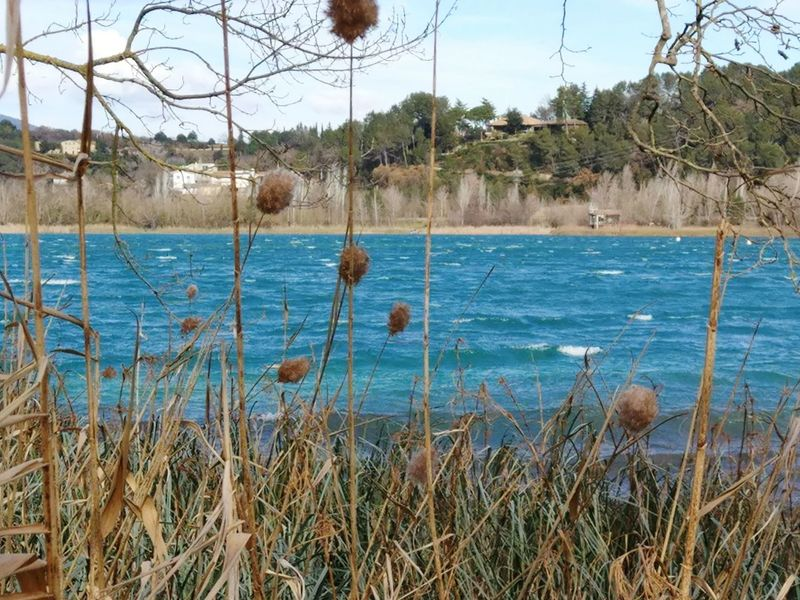 Banyoles Girona Banyoles Estany De Banyoles Estanydebanyoles Girona Catalunya Catalunyaexperience Tranquil Scene Vacations Scenics Sky Tree Estany Water Day Outdoors Nature Lake No People Plant Beauty In Nature Growth
