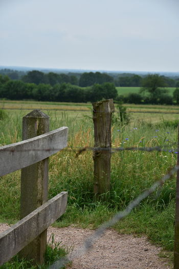Barrier Boundary Day Environment Fence Field Grass Green Color Land Landscape Nature No People Outdoors Plant Post Protection Rural Scene Security Sky Tranquil Scene Tranquility Wood - Material Wooden Post