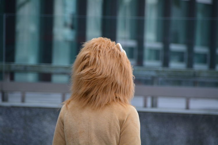Rear view of person in lion costume against building