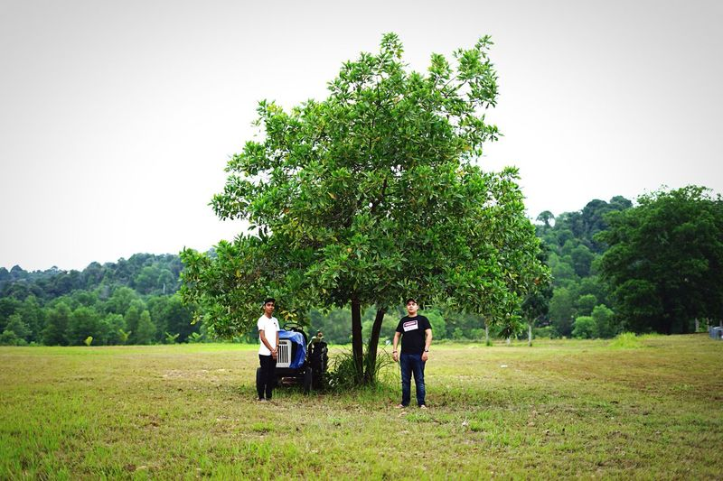 Tree Togetherness Men Grass Person Lifestyles Leisure Activity Bonding Rear View Love Casual Clothing Park - Man Made Space Green Color Growth Full Length Clear Sky Plant Day Friendship Nature