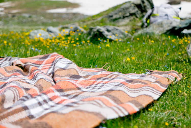Blanket Close-up Day Environment Field Focus On Foreground Grass Green Color Growth Land Nature No People Outdoors Pattern Picnic Picnic Blanket Plant Relaxation Selective Focus Textile