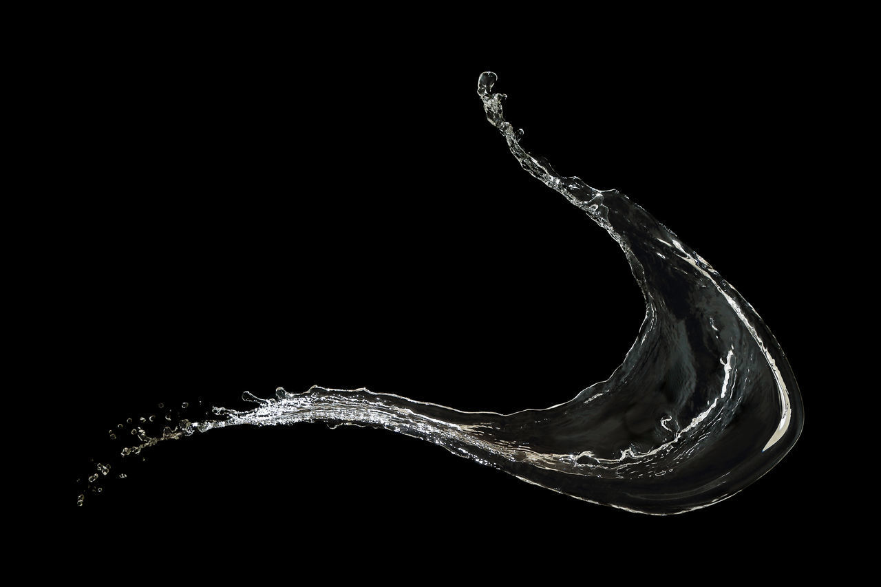 studio shot, black background, copy space, water, splashing, close-up, indoors, no people, motion, drop, nature, design, cut out, pattern, shape, one animal, bubble, purity, beauty in nature, high-speed photography