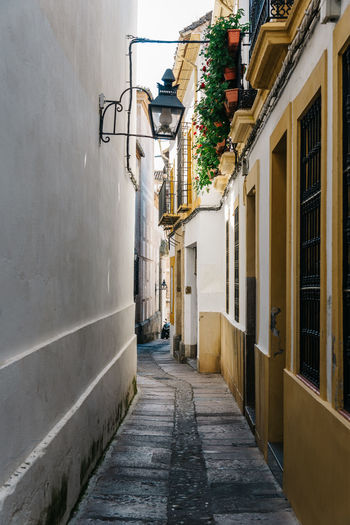 Narrow street in historical jewish quarter of Cordoba Andalusia City Cordoba Spain Jewish District Spanish Travel Alley Architecture Building Exterior Built Structure Centre Day Historic Narrow Street No People Outdoors Spaın Street The Way Forward Town Walkway Wall Lamp White Wall
