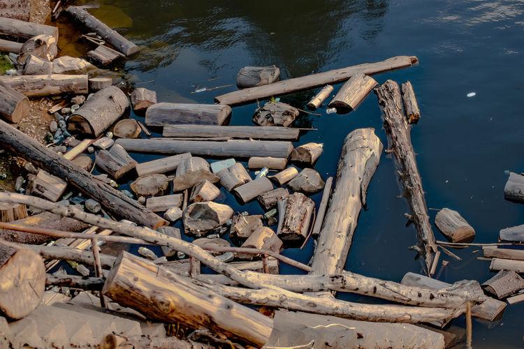 Close-up of log in lake