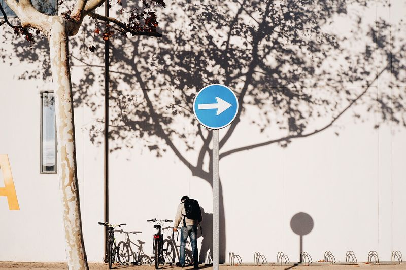 Streetphotography People Boy Bike Bikes Bikers Climatechange Green Lifestyle Signs Street Urban Everyday Lives Façade Architecture Light And Shadow Creative Light And Shadow Tree Shadows Direction Campus University Young Men Minimalism My Student Life