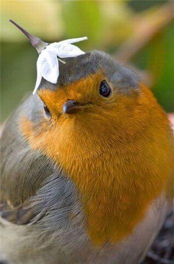 La meraviglia che ci regala la natura!!