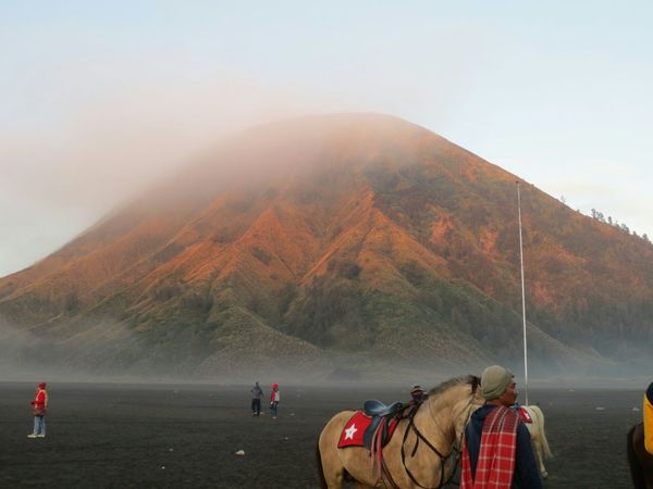 Mount Batok.. it was when the morning sun shinning from behind Bromo Mountain. Mount Batok is no longer active. Take Photos Mountain View From My Point Of View The Purist (no Edit, No Filter) Misty Mountain Mountain_collection Nature Photography Beautiful Nature Travel Photography The Week On EyeEm