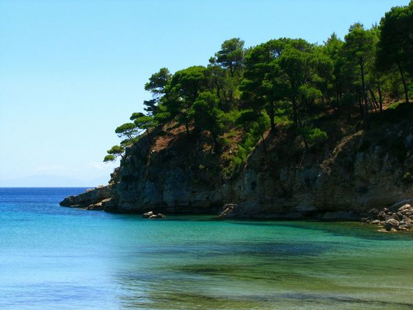 Cliff Beach Beach Photography Seascape Sea Water Trees Tranquil Scene Tranquility Blue Shades Of Blue Alonnisos Island Greek Islands Greenery Pine Trees Green And Blue Beauty In Nature Nature My Year My View Rock Formation Steep Cliff Blue Sea Forest Sea And Forest