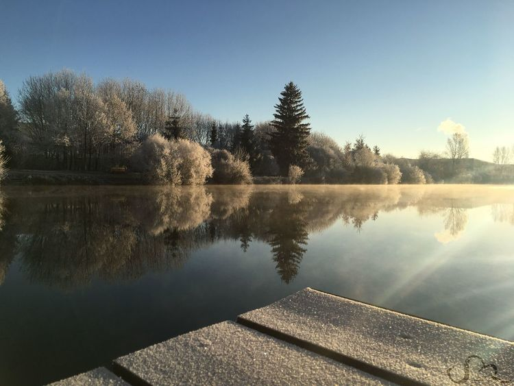 Beauty In Nature Cold Day Frost Frosty Mornings Lake Nature No People Outdoors Refection Reflection Sky Stanleyreagh Tree Water Winter Winter Wonderland
