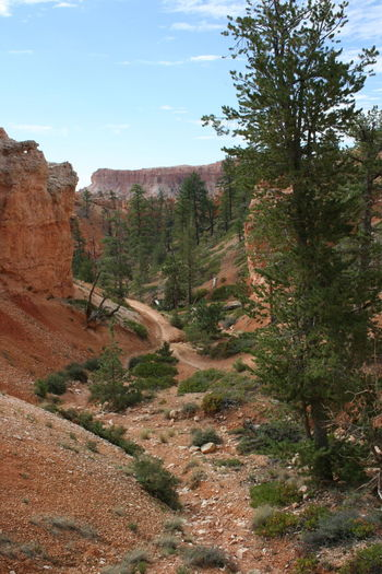 Bryce Canyon Brycecanyon Hiking Mule Ride Physical Geography Rock Formation Travel Travel Photography