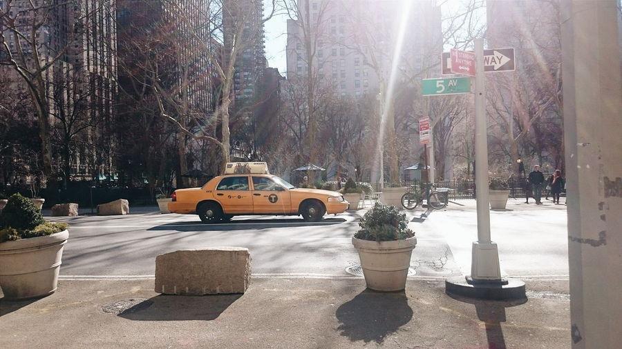 New York Yellow Taxi Sunlight New York City New York