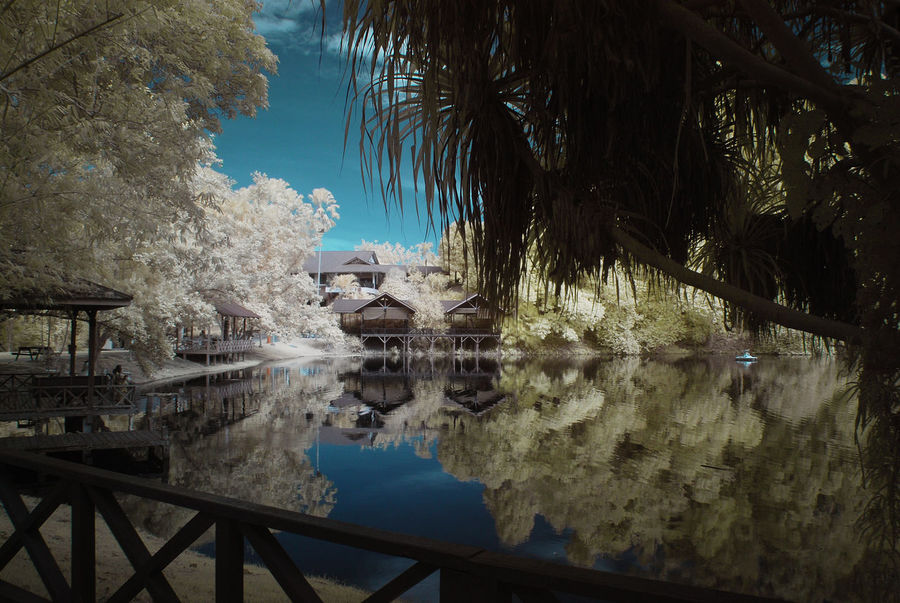 An infrared view of a lakeside with stilt house and colourful foliage. Calmness Framing Infrared White Foliage Beauty In Nature Blue Sky Branch Built Structure Color Infrared Colorful Foliage Day Infrared Photography Landscape Nature No People Outdoors Reflection Scenics Sky Tranquil Scene Tree Water Yellow Foliage