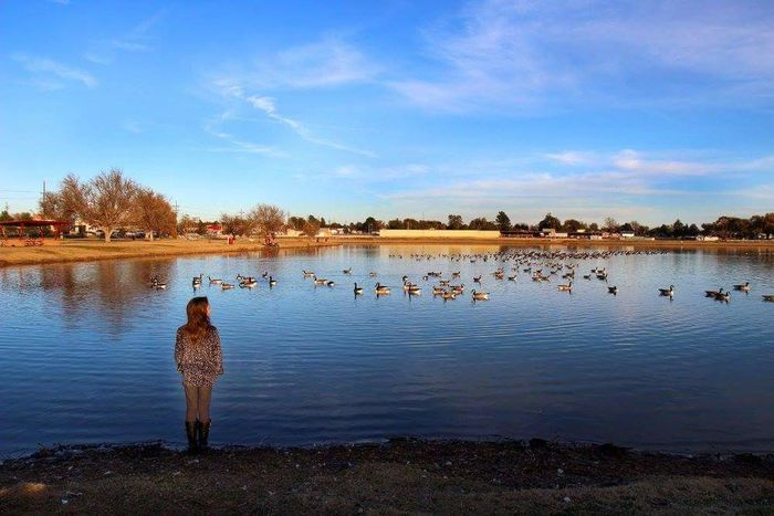 Water Rear View Lake Full Length Bird Sky One Person Nature Tree Outdoors Cloud - Sky Animal Themes Flock Of Birds Young Adult