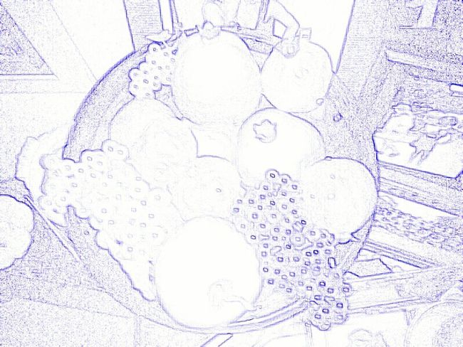 2015  Photography Sketching Colored Pencil Paulette Fruit Bowl