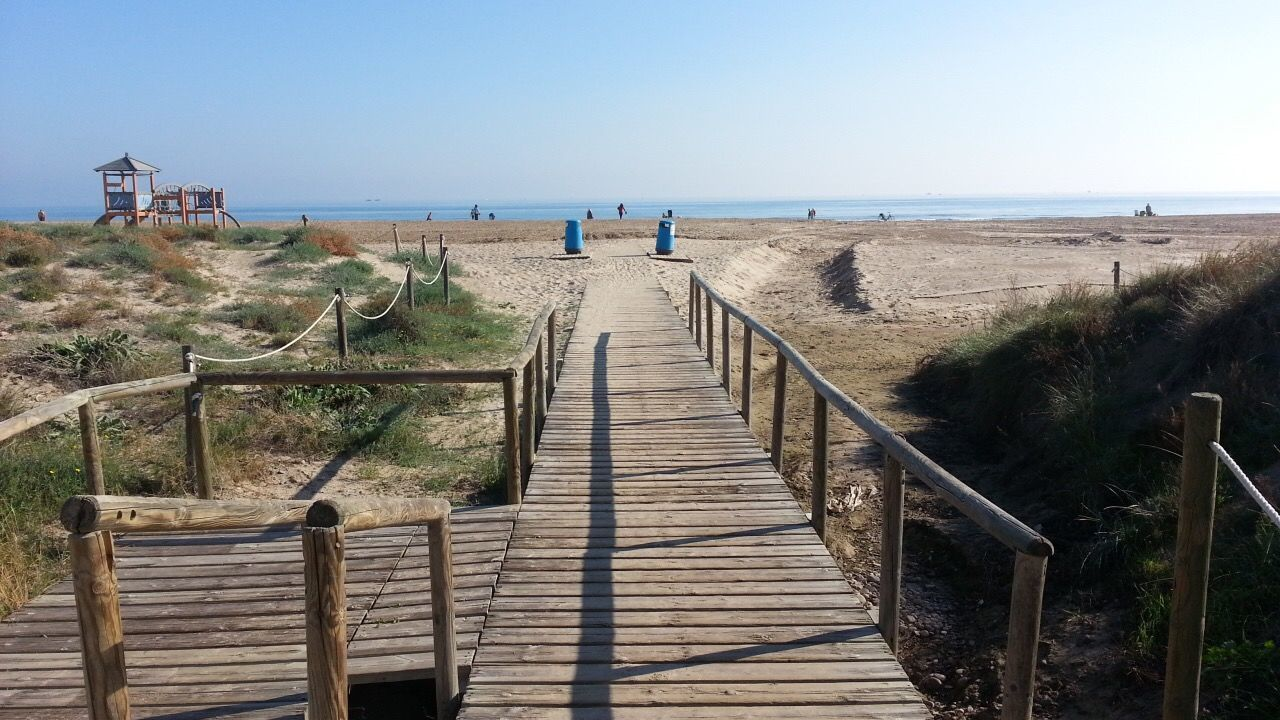 sky, sea, land, beach, water, the way forward, direction, nature, clear sky, plant, footpath, horizon over water, horizon, wood - material, boardwalk, beauty in nature, scenics - nature, tranquil scene, grass, no people, outdoors, wood, wood paneling, diminishing perspective, timothy grass, long