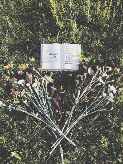 Hilltop grave