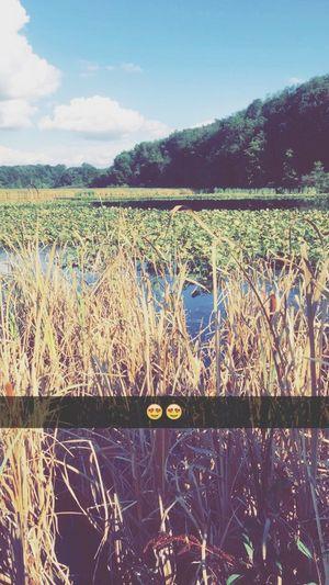 Duck lookin😍❤️