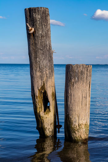 Water Wood - Material Horizon Scenics - Nature Beauty In Nature Wooden Post Tranquil Scene Waterfront No People Blue Nature Sky Tree Tranquility
