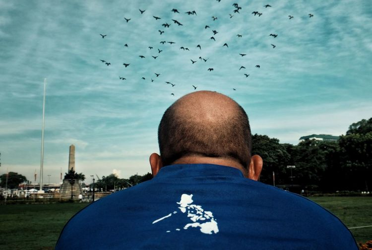 Rear view of man flying birds