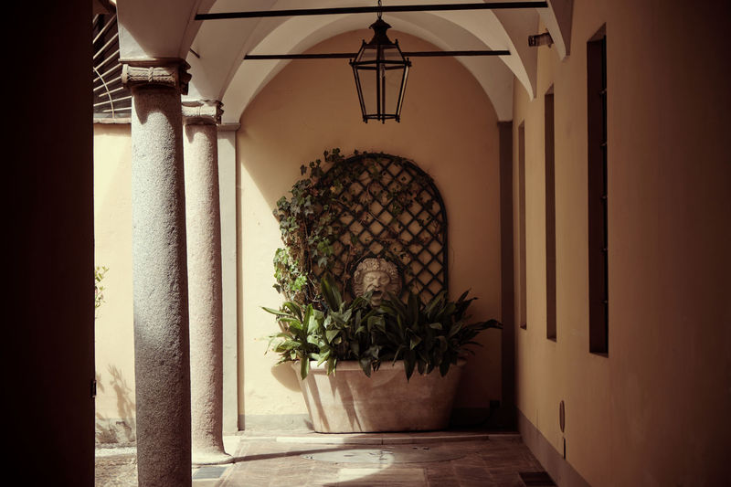 Architecture Built Structure Indoors  Potted Plant Building Arch Door Entrance No People Plant Window Wall - Building Feature Day Architectural Column Arcade Corridor Hanging Lighting Equipment Decoration Nature Electric Lamp Ceiling