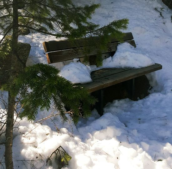 Wooden Bench Nature On A Hike Exploring Nature Enjoying The Sights Nature Landscapes With WhiteWall Enjoying The View