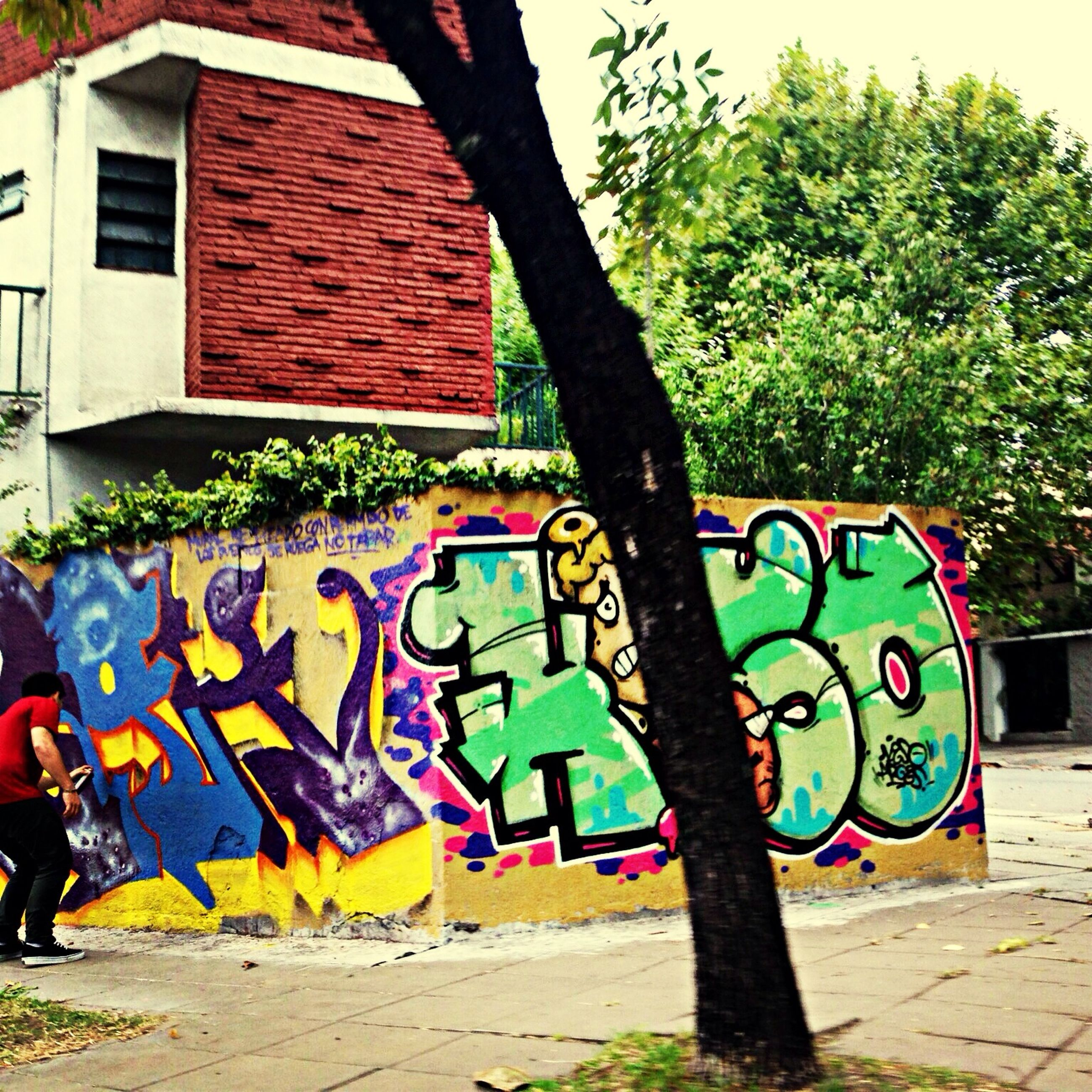 graffiti, art, creativity, art and craft, multi colored, tree, street art, built structure, text, architecture, human representation, wall - building feature, building exterior, day, outdoors, animal representation, western script, colorful, mural, street